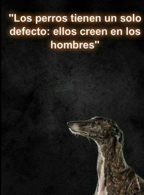 #TODOSSOMOSIMPORTANTES