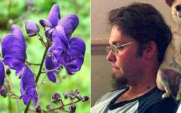 Gardener 'died after brushing past poisonous plant' in millionaire's garden
