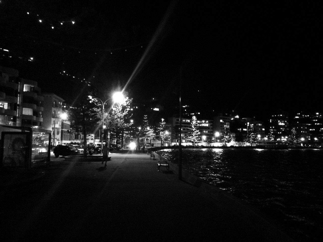 Oriental Parade by night, lights strung in the trees, shining on the water
