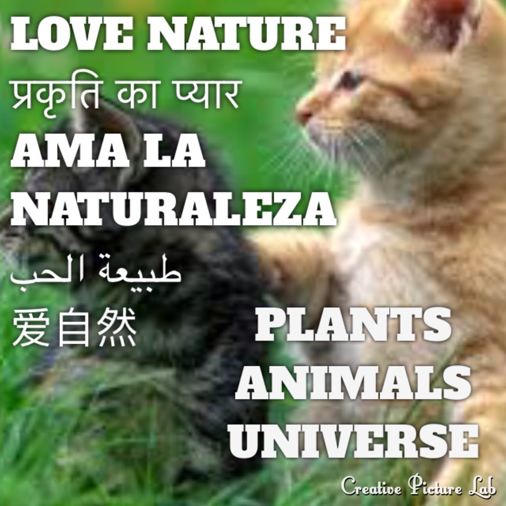 B2). LOVE NATURE प्रकृति Natureza Природа طبيعة 性质 Bible/EGW/SDA - Magazine cover
