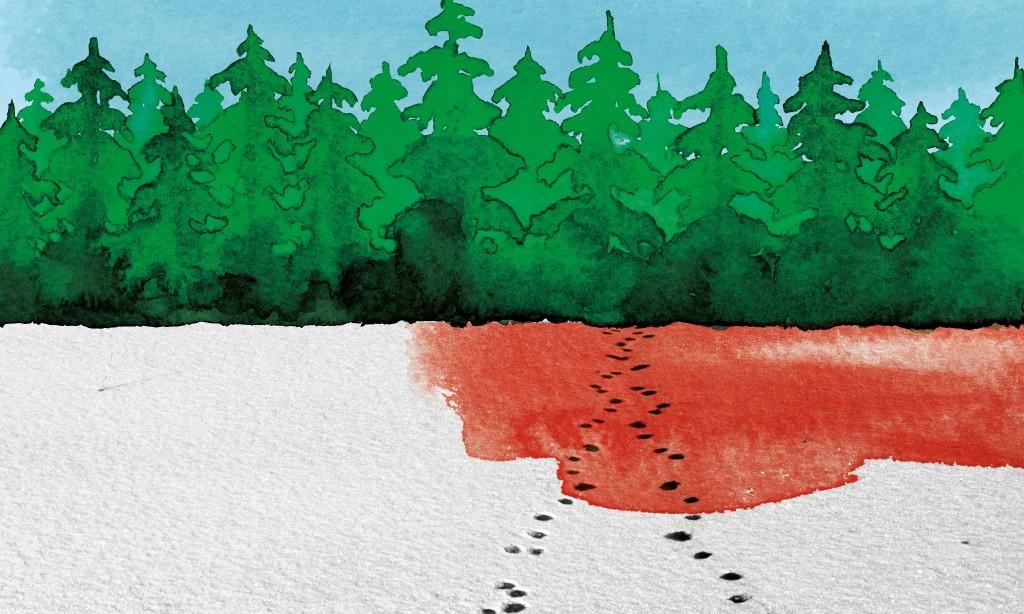 The myth of the 'lone wolf' terrorist