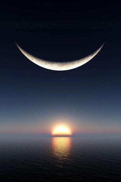 viola ⭐ Good night ⭐⭐⭐