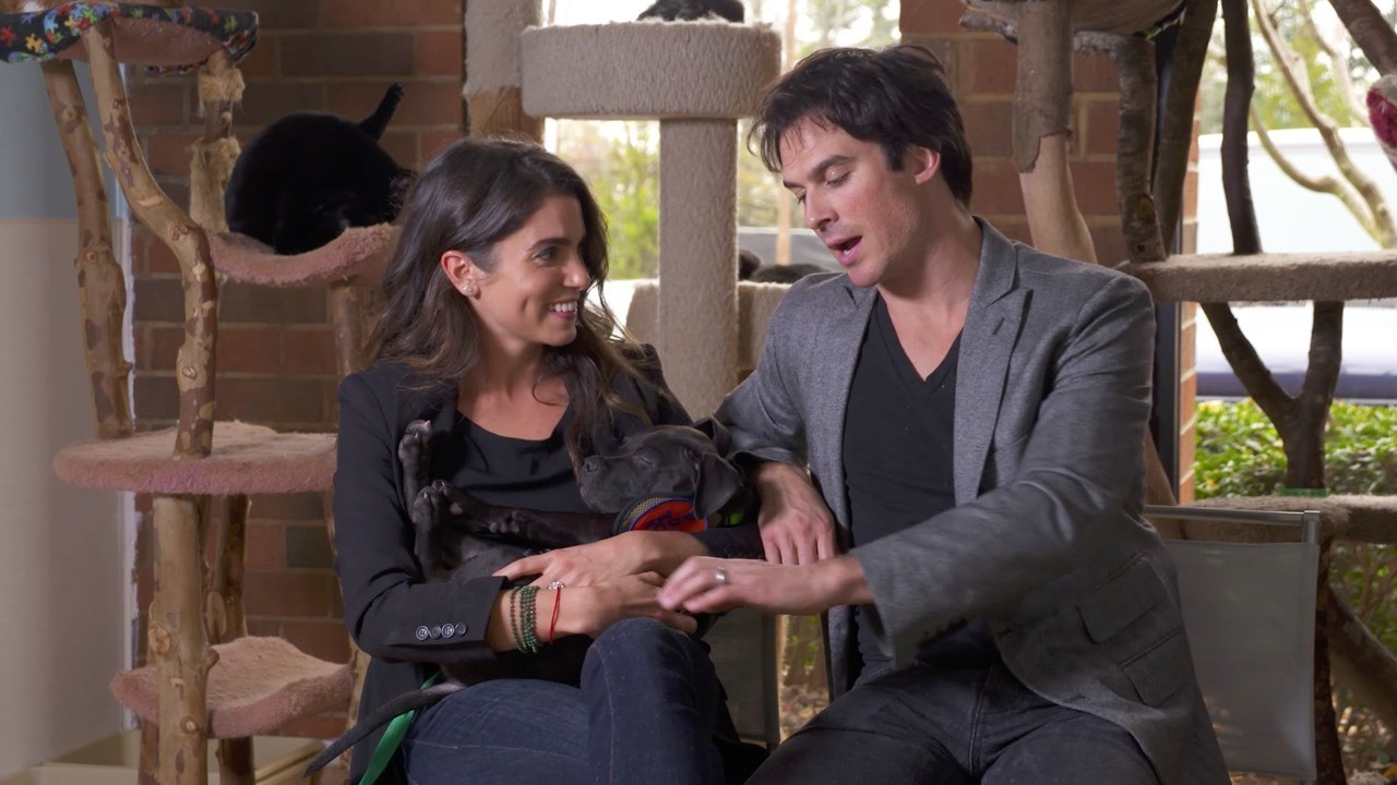 Nikki Reed and Ian Somerholder don't just have 4 dogs, 3 cats and 2 horses, they've also turned their passion for animals into action. Watch Aspireist this sunday at 8am on USA.