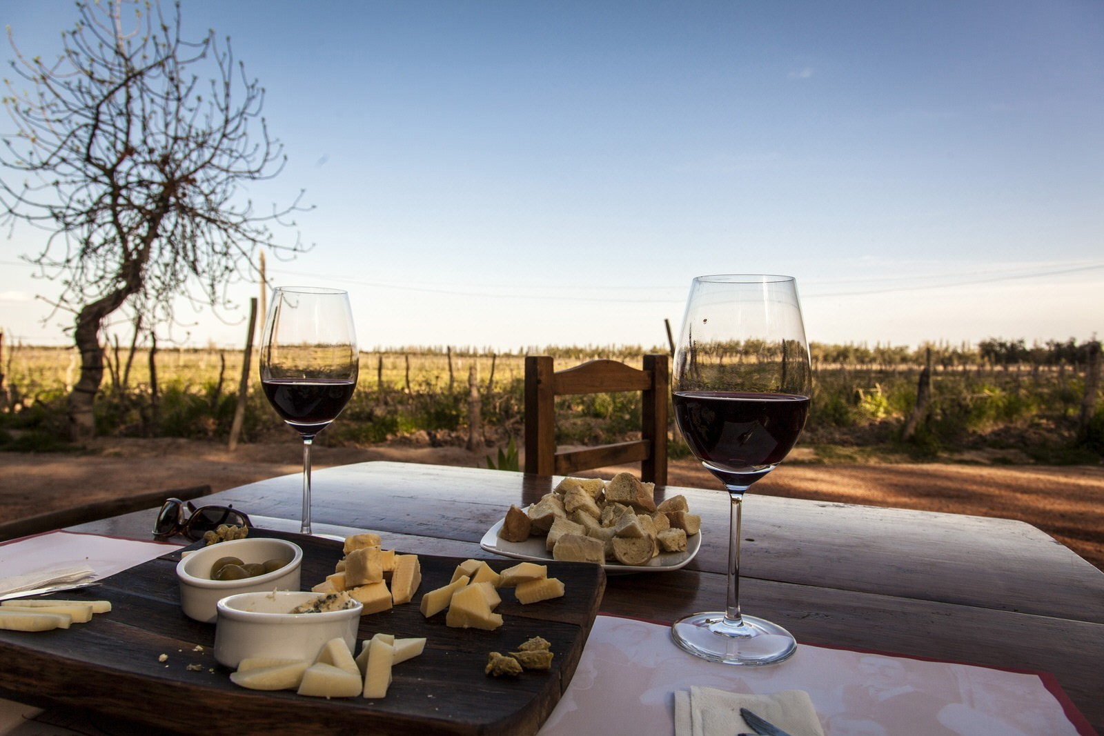 Wine tasting on a shoestring in South America
