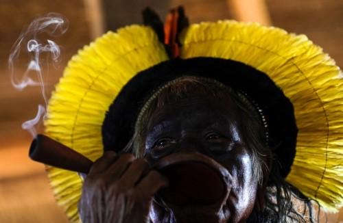 Brazilian tribes back manifesto to save Amazon habitat from Bolsonaro