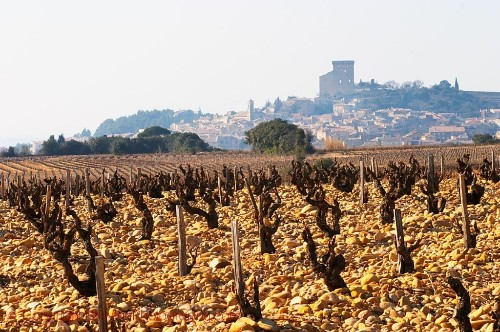 Châteauneuf-du-Pape: Rich and Spicy Wines With a Historical Heritage