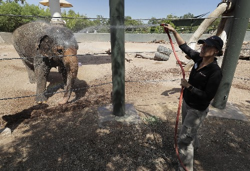 Temperature in Phoenix spikes to hottest of the year