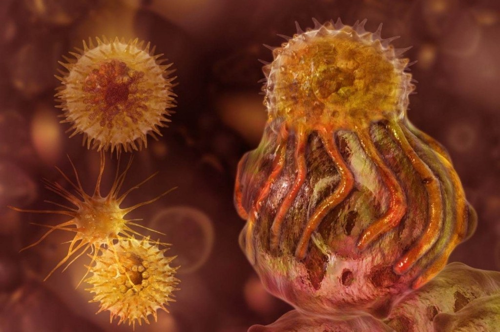 The list of cancers that can be treated by immunotherapy keeps growing