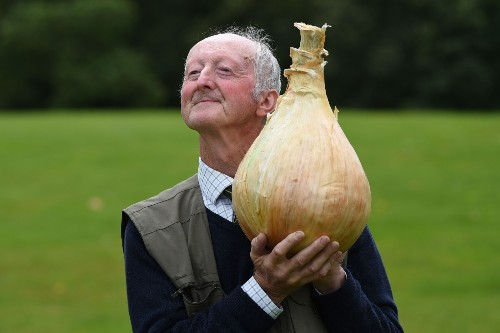 Giant Vegetables Invade English Flower Show: Pictures