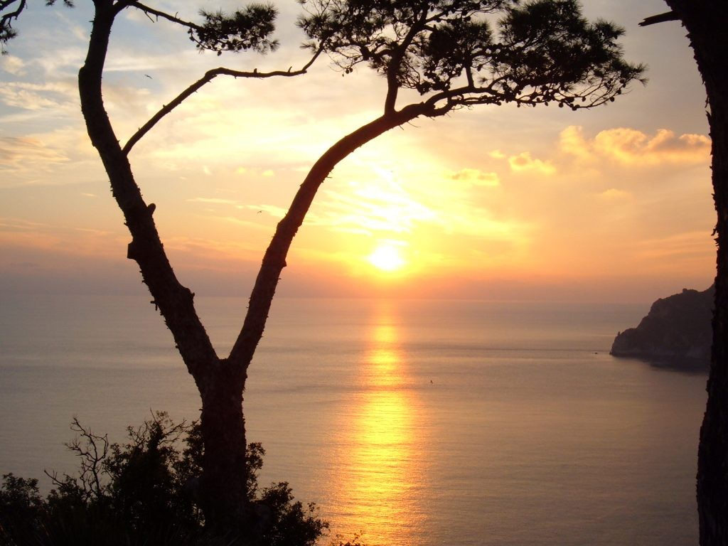 "The best sunrise ever in Capri? Pian delle Noci. Panoramic terraces overlooking the sea, the wild Cala Matermania and Punta Massullo. In the background you can enjoy Punta Campanella of Sorrento Peninsula , the Amalfi Coast with the famous islets of Li Galli and the Gulf of Salerno. Pian delle Noci is the place where you can enjoy the best sunrise ever in Capri. From the Piazzetta of Capri in about 20 minutes you can reach the ""Pian delle Noci"" following Via Delle Botteghe Via Croce , Via Matermania and Via Dentecala."