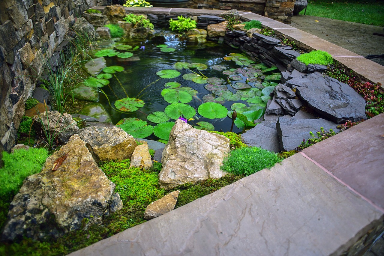 Formal style koi pond built by Aquatic Edge. Gibsonia PA