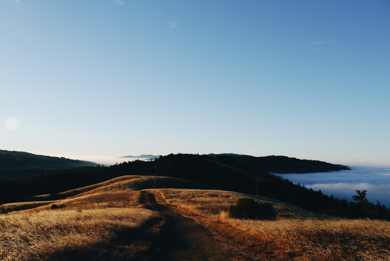 Isolation | Russian Ridge Preserve