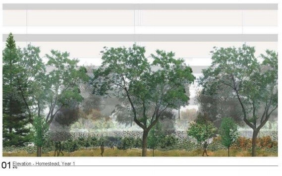 A look at Apple's insanely ambitious tree-planting plans for its new spaceship campus