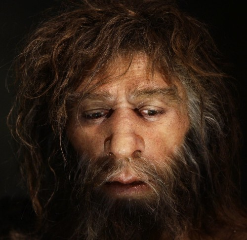 Fossilized Human Poop Reveals The Real Paleo Diet