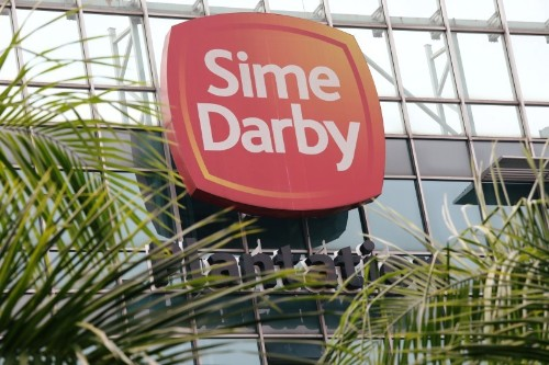 Malaysian palm giant Sime Darby geared to handle India curbs - executive