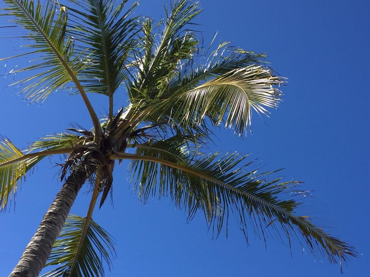 Céu da praia de Pitinga
