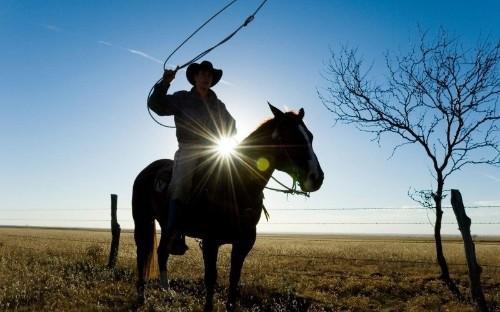 Will Texas Stay Texan?
