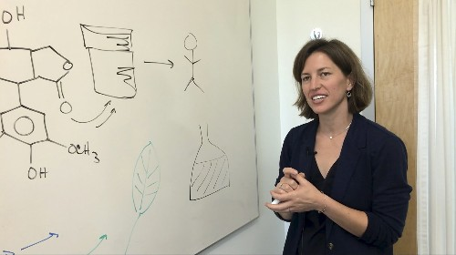 Scientists shift medicinal properties from one plant to another
