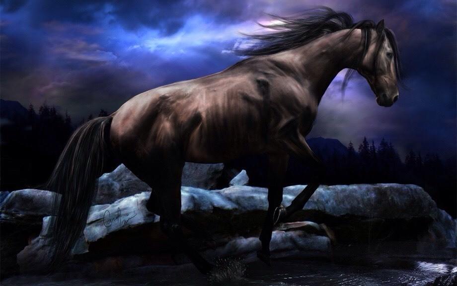 """Лежит гусар младой на бранном поле, Конь верный около стоит. В седло гусару не подняться более, И так коню он говорит: - О Ты, мой Друг, проверенный годами! Не жди, беги... И про меня забудь. Я вспомню все, что было с нами. Как жаль, что жизнь нельзя вернуть... С тобою неразлучен был вовек. И слыли мы грозой сражений. Но знаем, что не вечен человек, Из жизни улетаем, будто тени. Ах, как порой мы мчались по аллее. Любил так пылко, нежно, страстно. Но кровоточат раны. Слабею я, слабею. И все же говорю, жизнь не была напрасна. Лишь ты и сабля - вы верны мне были, Когда нас трубы звали на войну... Счастливые деньки, куда же вы уплыли!? Вот ранен я в последнем тут бою Лежу... В груди болит и ноет. И стаей вороньё слетается сюда. Береза надо мной, она, как дева стонет И, видимо, под нею усну я навсегда. Дай потреплю по гриве раз последний. Прошу я, лихом ты меня не поминай. Тебя в полку возьмет другой наездник... Я умираю, Друг. Оставь меня. Прощай! Стекла слеза на ментик седока, Склонил конь низко голову свою... И тут хозяин смолк... Упала вдруг рука Безжизненно на алую траву. Увидя то, тоскливо конь заржал. Он, видимо, """"прощай"""" хотел сказать. Остался верен дружбе, продолжал Он мертвого от птиц оберегать. Там их нашли друзья, на этом поле. Но вороной домой не захотел идти. Ведь преданность дороже всякой воли, Ему такого друга больше не найти. Лежит гусар младой на бранном поле. На землю белую садиться серый дым. Закрыты очи. Свет не видят более. И ржет, как плачет, конь над ним..."""