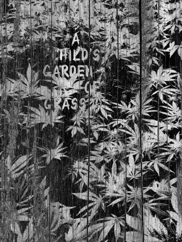 Cannabis Alley - cover