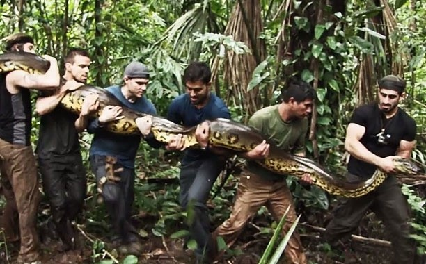 Man to be eaten alive by anaconda in Discovery special