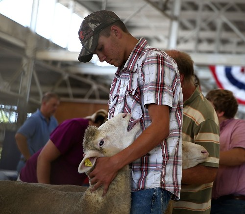A Summer Rite, The Iowa State Fair