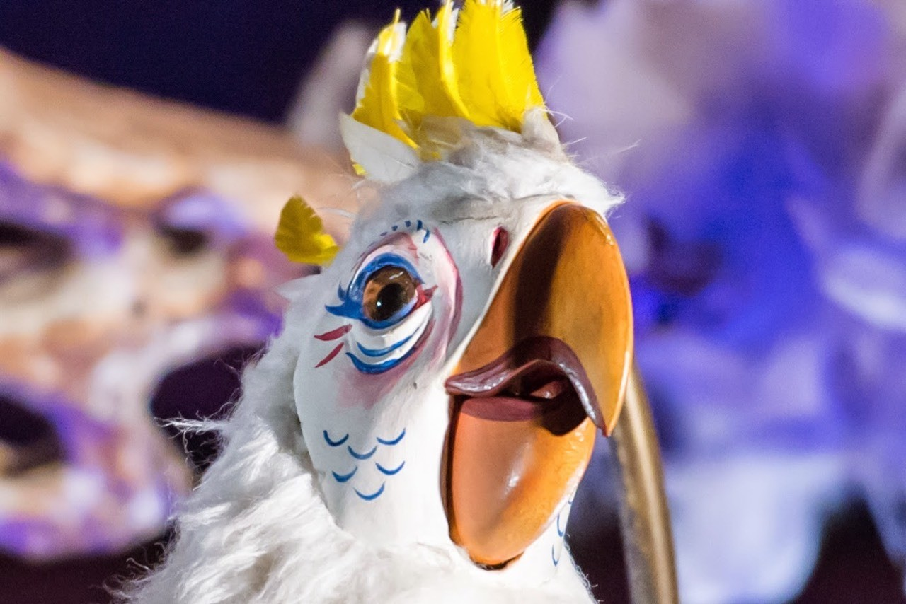"Daily Disneyland: Disneyland's Tiki Room girl, ""Let's all sing like the birdies sing"" #disney #disneyland #adventureland #tikiroom"