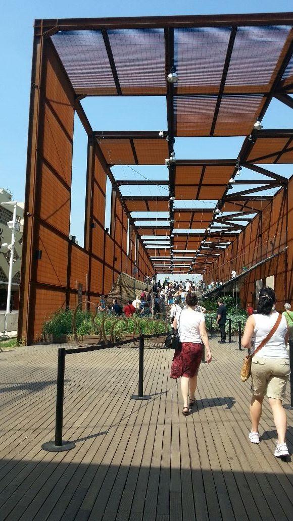 Ecco la rete della biodiversità del padiglione del BRASILE
