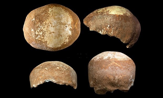 Skull discovery suggests location where humans first had sex with Neanderthals