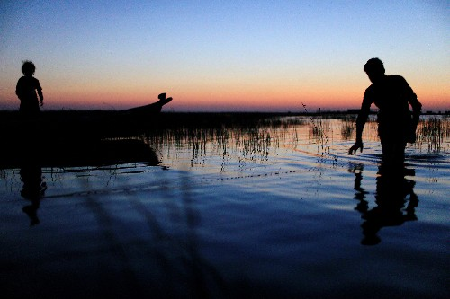 'Water is life': unexpected rainfall revives Iraq's historic marshlands