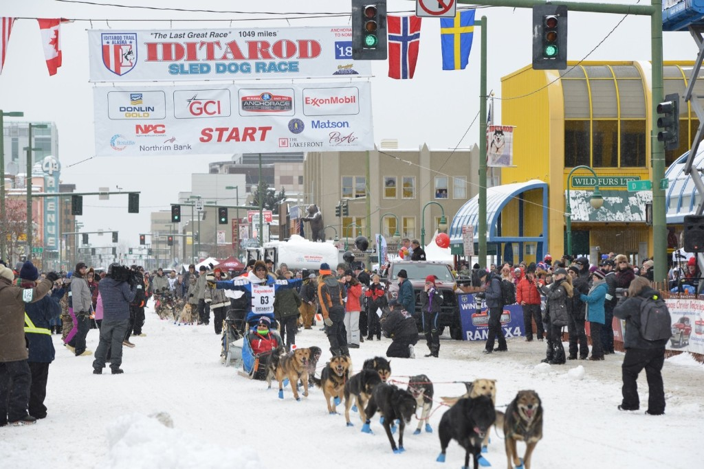 Mush! They're Off at the Iditarod: Pictures