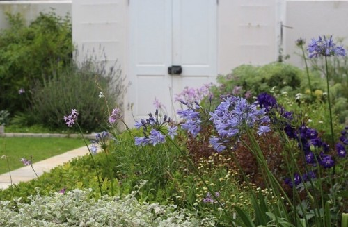Garden Visit: Julie's Soothing Green and White Palette in Cape Town