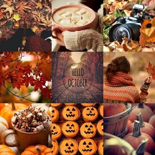 My favorite Holiday will always be October - December. My most favorite is October because I love the decorations and watching kids get dressed up, handing out the candy, watching all those cute Halloween movies... but also with December comes those same favorite things minus the handing out candy part.
