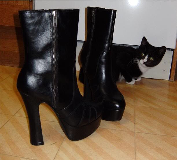Boots&Cats - Magazine cover