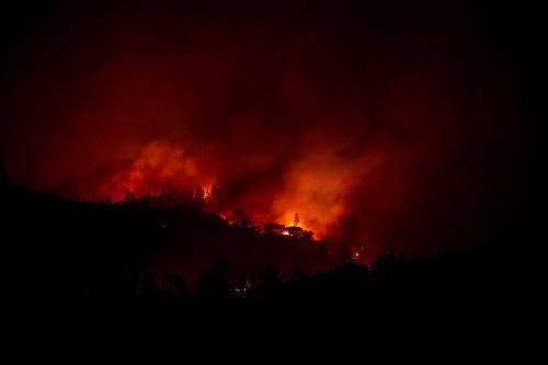 ارتفاع عدد ضحايا حرائق غابات كاليفورنيا إلى 31 قتيلا