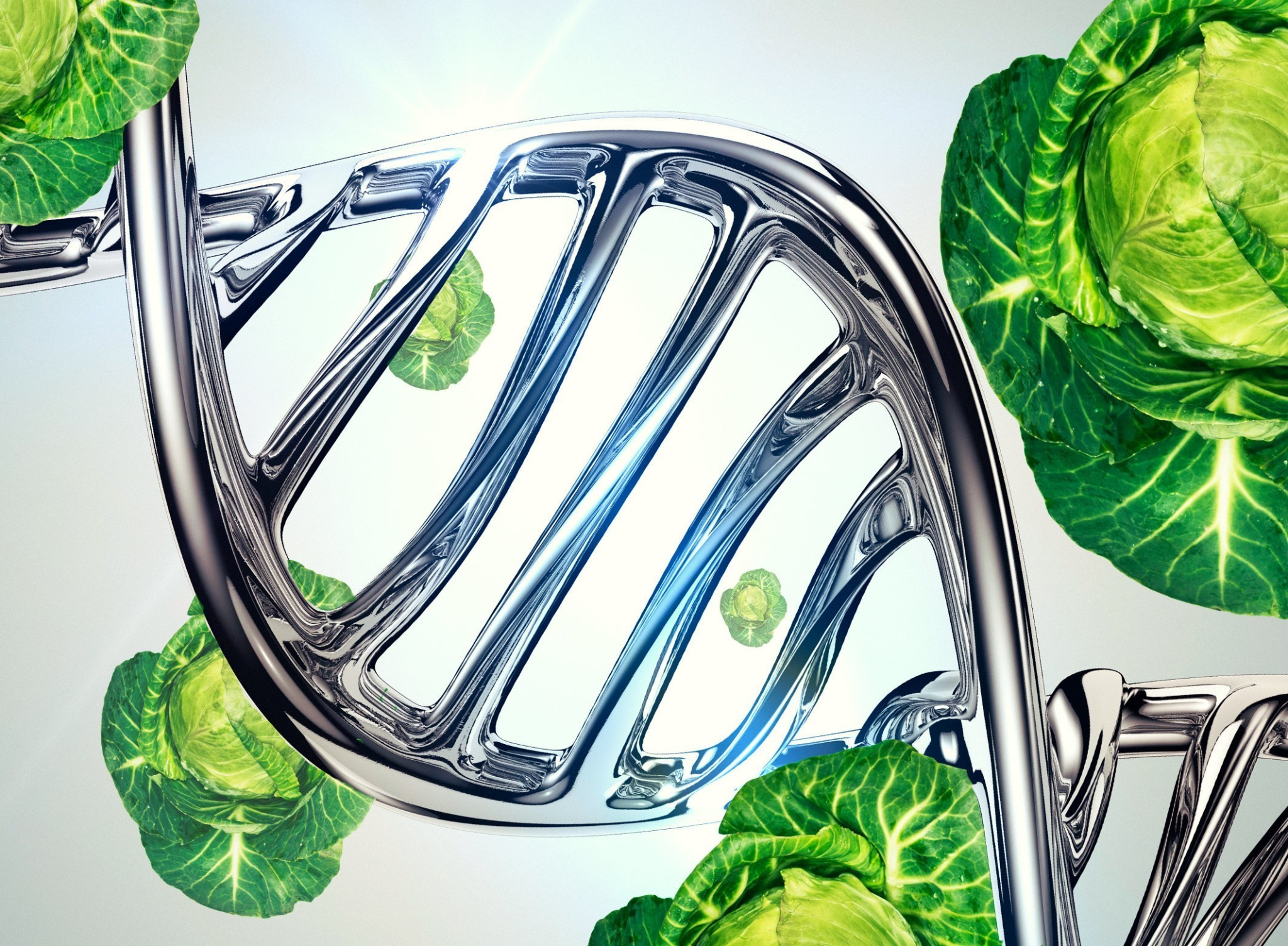 Can the perfect diet be decoded from your DNA?