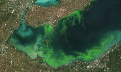 Farming practices and climate change at root of Toledo water pollution