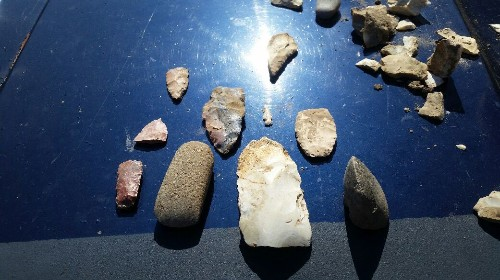 Today's Pike County Illinois Mississippi River side finds. Two celts (one was broken but still counts), a Canoe Carver, a flint knife, a drill, a bird point, broken Stanfield, and a few other broken points