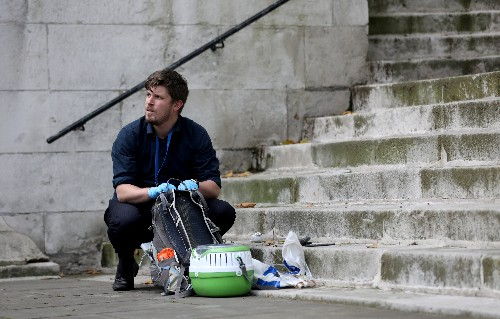 Man charged over stabbing incident outside UK interior ministry