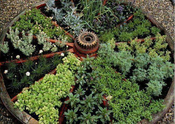 Holistic & Organic Living - cover
