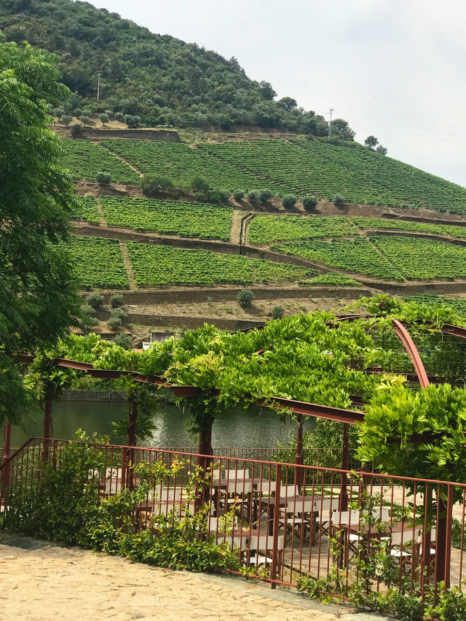 The Douro Valley in Portugal. Home to the original Port wines. Some of the wineries date back to the 1700s. It is a UNESCO World Heritage sight.