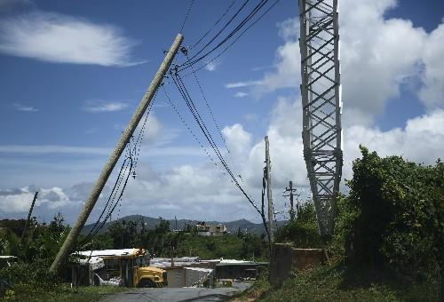 New Puerto Rico gov suspends contract to rebuild power grid