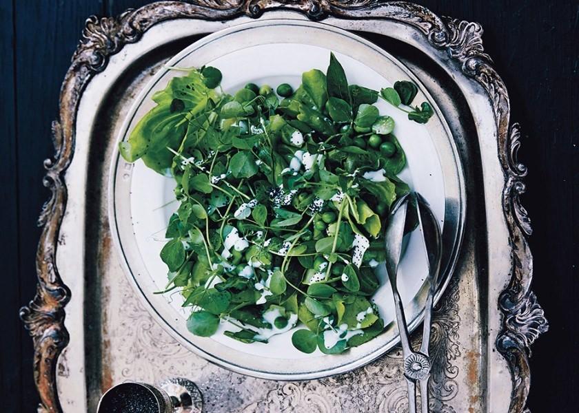 18 Fava Bean Recipes Because Spring! Spring! Spring!