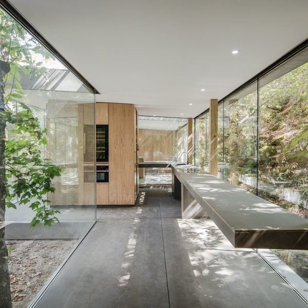 A Portuguese Glass House Uses Surrounding Foliage as a Privacy Screen