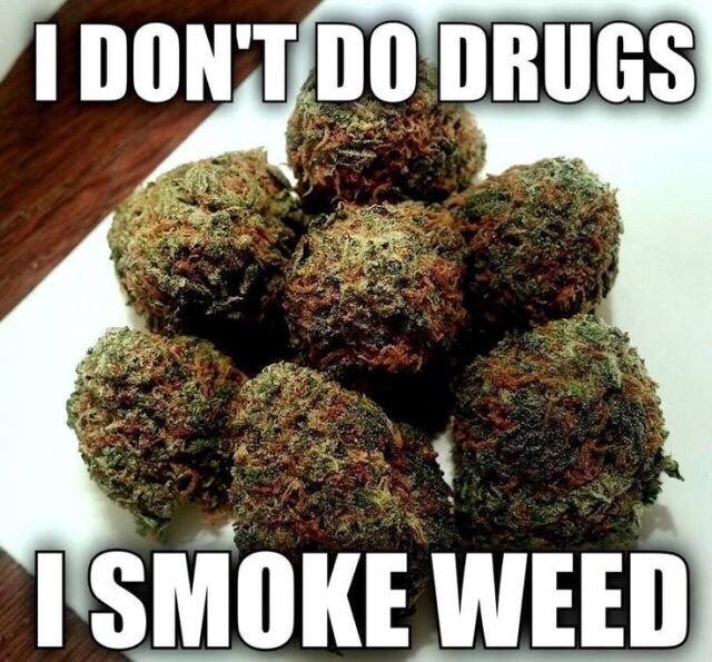 """""""Es claro que muchas personas que prueban marihuana son más propensos a consumir cualquier otra droga con más facilidad que otro que no ha consumido nada, ni alcohol ni ninguna sustancia que afecte el funcionamiento general del cuerpo humano"""" (Calleja, 2010)"""