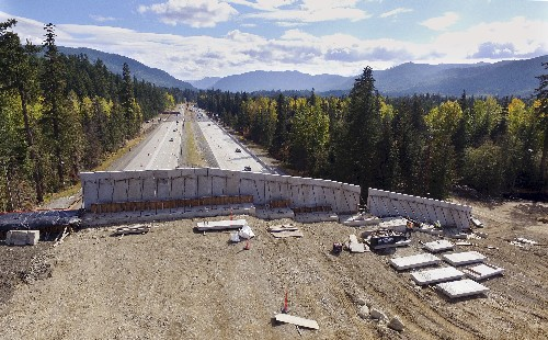 Washington state builds bridge to keep wildlife off highway