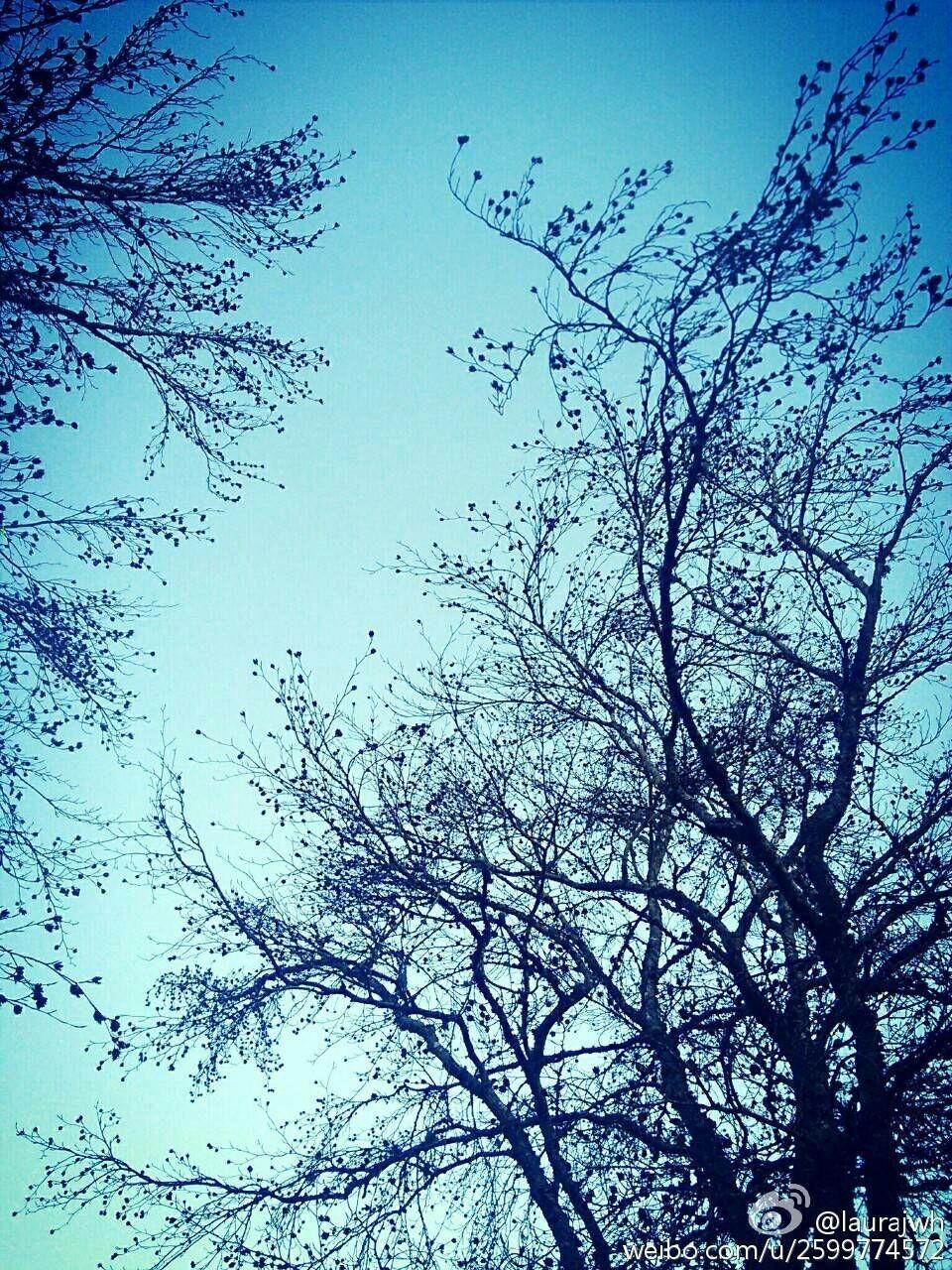 浅冬·天青色@Soft Winter·Sky-blue