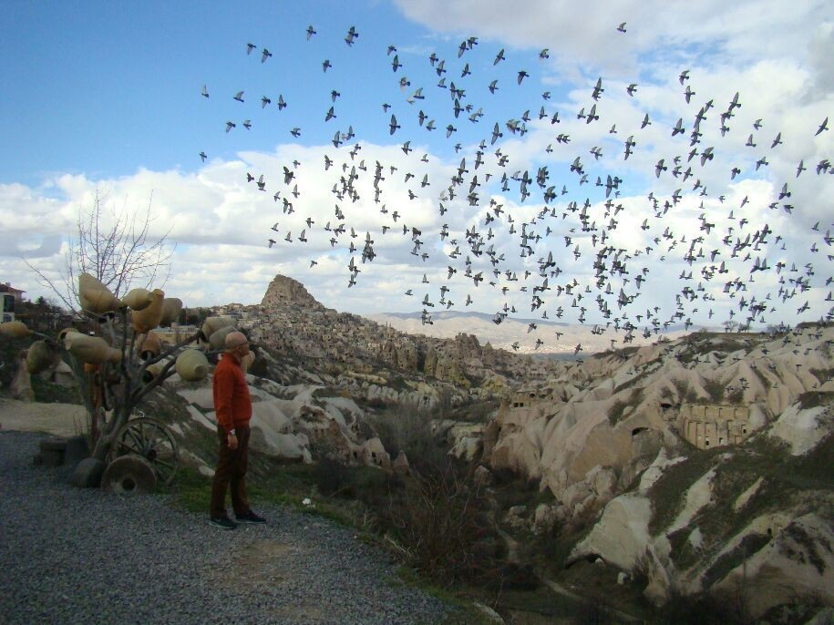 capadocia, pigeon valley... with pigeons