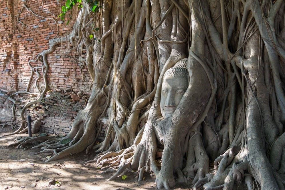 A tale of two Thai cities: how to visit Ayuthaya and Lopburi in just one day
