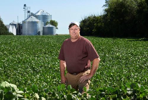 Size matters. Big U.S. farms get even bigger amid China trade war